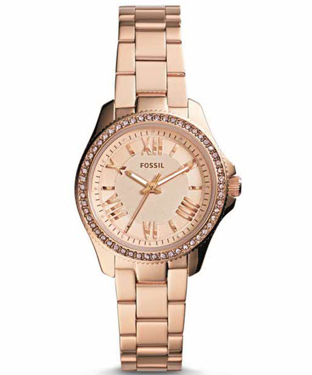 Fossil Cecile Mini AM4578